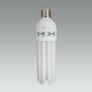 電球形蛍光灯【200V専用】 JDU85ED