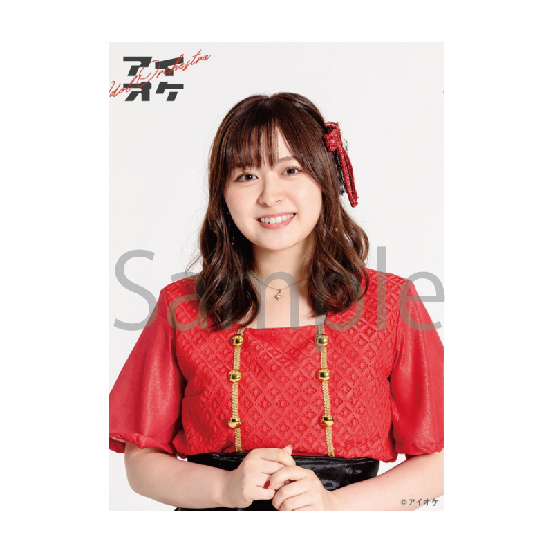 <img class='new_mark_img1' src='https://img.shop-pro.jp/img/new/icons1.gif' style='border:none;display:inline;margin:0px;padding:0px;width:auto;' />2Lブロマイドセット(個人&集合セット) JINver.