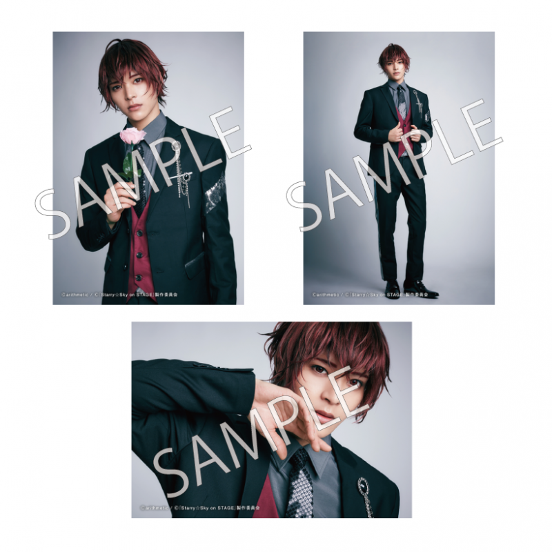 <img class='new_mark_img1' src='https://img.shop-pro.jp/img/new/icons1.gif' style='border:none;display:inline;margin:0px;padding:0px;width:auto;' />「Starry☆Sky on STAGE SEASON2 〜星雪譚 ホシノユキタン〜」個人ブロマイド 3枚組