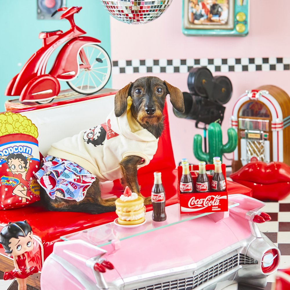 【メーカー直送品】ペットウェア(犬服)(※サイズを選択してください。)(Betty Boop pair hoodie B BTH_B