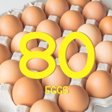 平飼い有精卵80個