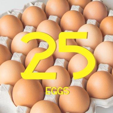 平飼い有精卵25個