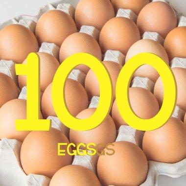 平飼い有精卵100個