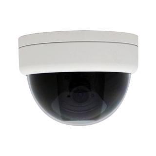 NSC283 48万画素耐衝撃ミニドーム型カメラ