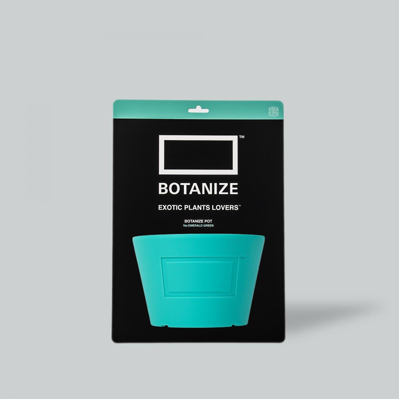 MEDICOM TOY × BOTANIZE  Pot  EMERALD  GREEN