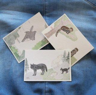 ポストカード(エゾ モモンガ・オオカミ・レッサーパンダ )