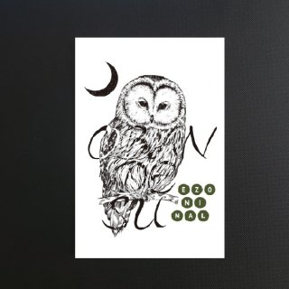 EZONIMAL(エゾニマル)ポストカード| エゾフクロウ