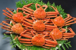 16)ずわい蟹甲羅 6個入