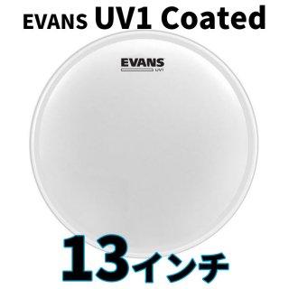 EVANS(エバンス) UV1 コーテッド 13インチ スネア・タム打面用ヘッド B13UV1