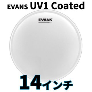 EVANS(エバンス) UV1 コーテッド 14インチ スネア・タム打面用ヘッド B14UV1