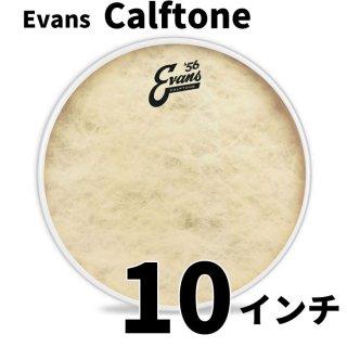 EVANS(エバンス) カーフトーン 10インチ タム打面用ヘッド  TT10C7
