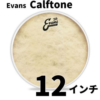 EVANS(エバンス) カーフトーン 12インチ タム打面用ヘッド  TT12C7
