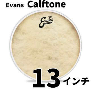 EVANS(エバンス) カーフトーン 13インチ タム・スネアドラム打面用ヘッド  TT13C7