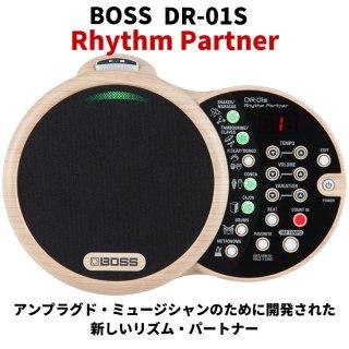 Roland (ローランド) リズム・パートナー Rhythm Partner DR-01S