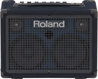 Roland (ローランド) キーボード・アンプ  Battery Powered Stereo Keyboard Amplifier KC-220