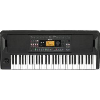 <img class='new_mark_img1' src='https://img.shop-pro.jp/img/new/icons1.gif' style='border:none;display:inline;margin:0px;padding:0px;width:auto;' />KORG (コルグ) ENTERTAINER KEYBOARD エンターテイナー・キーボード EK-50