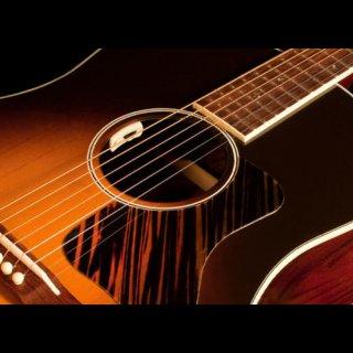L.R.Baggs (エルアールバッグス)Anthem SL アコースティックギター用ピックアップ