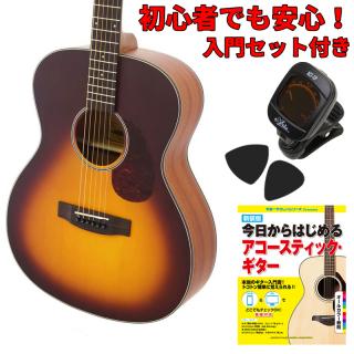 【入門セット付き】ARIA(アリア)アコースティックギター Aria-101-MTTS 【ソフトケース付属】
