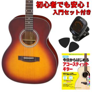【入門セット付き】ARIA(アリア)アコースティックギター AF-201-TS 【ソフトケース付属】
