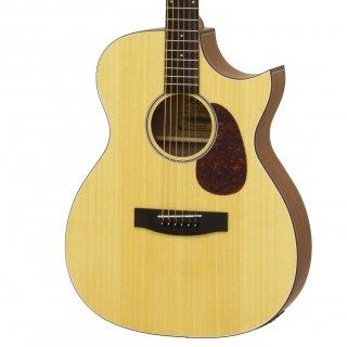 ARIA(アリア)エレクトリックアコースティックギター Aria-101CE-MTN 【ソフトケース付属】