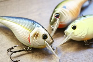 6th Sense / Cloud9 Magnum Squarebill Crankbait