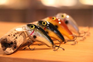 D&W Customs / Bee Shad