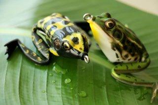Lunkerhunt / Lunker Frog