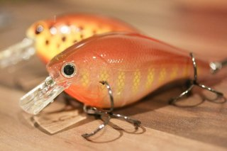 Luck E Strike / RC2 Rick Clunn Square Bill Crankbait Series4