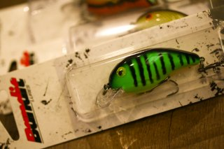 Bandit Lures / Series 100