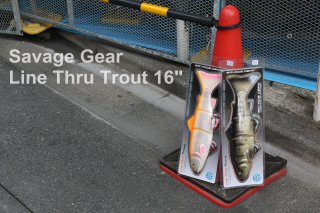 Savage Gear / 3D Line Thru Trout 16