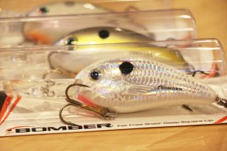 Bomber / Fat Free Shad Square Lip BDSL7F