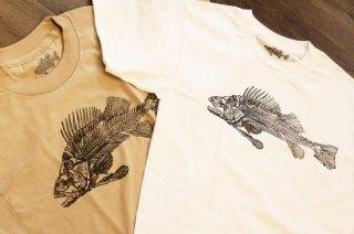 Bass Turd / Fossil