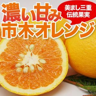 市木オレンジ