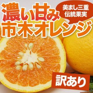 訳あり!市木オレンジ