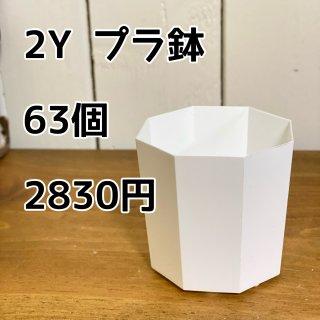 2Y プラ鉢 63個